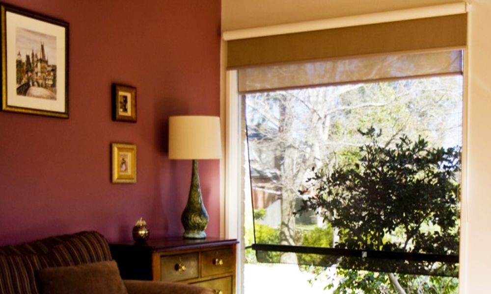 Double Roller Blinds 4
