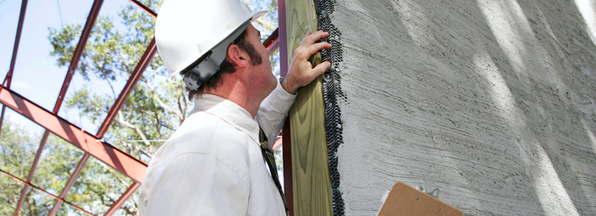 Pest Inspections