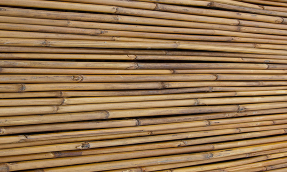 Bamboo Fencing 3