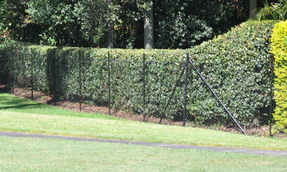 Chainmesh Fencing 11
