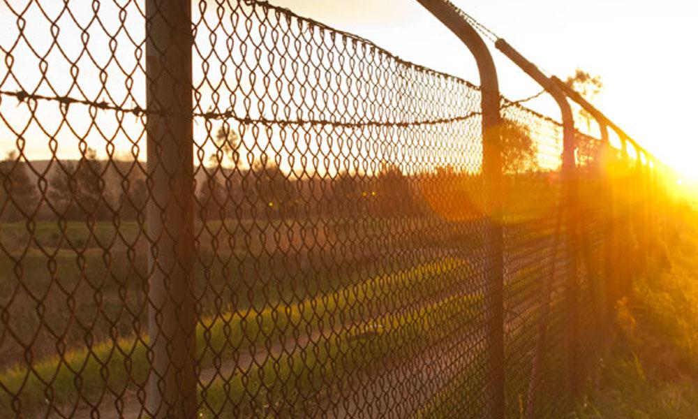 Chainmesh Fencing 2