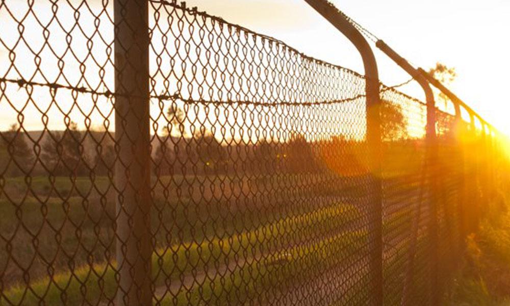 Mesh Fencing 3