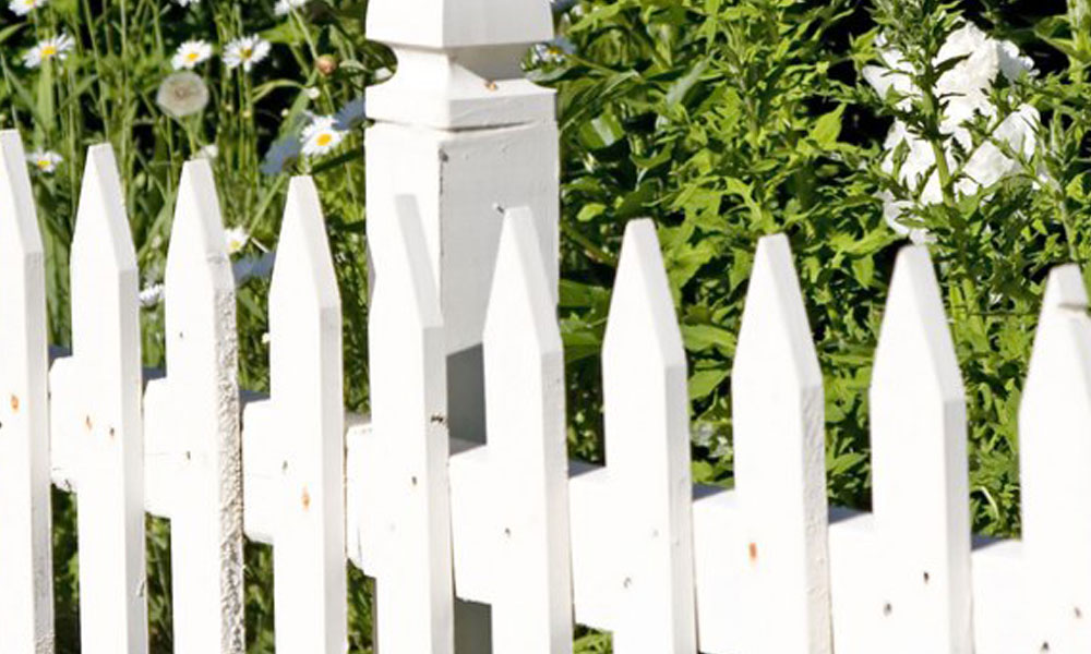 Picket Fencing 5