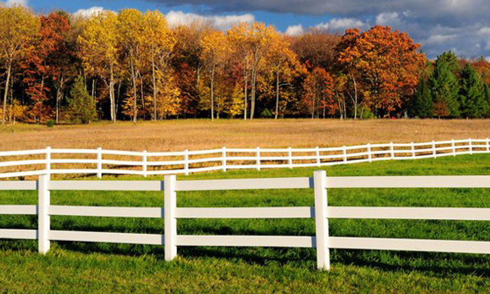 Rail Fencing 10