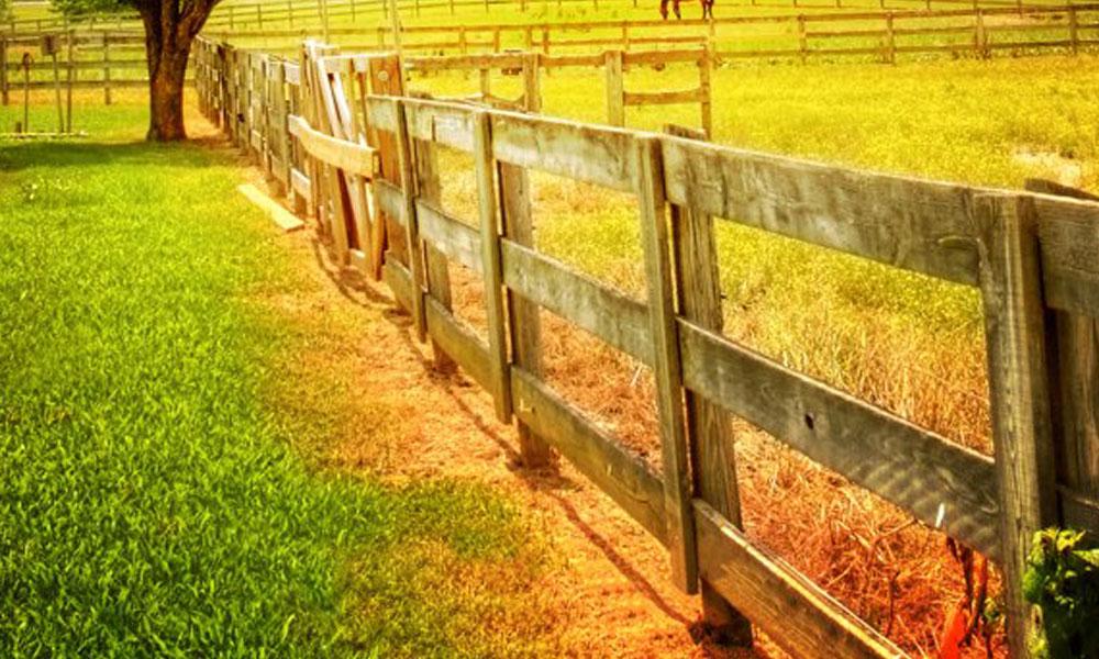 Rail Fencing 5