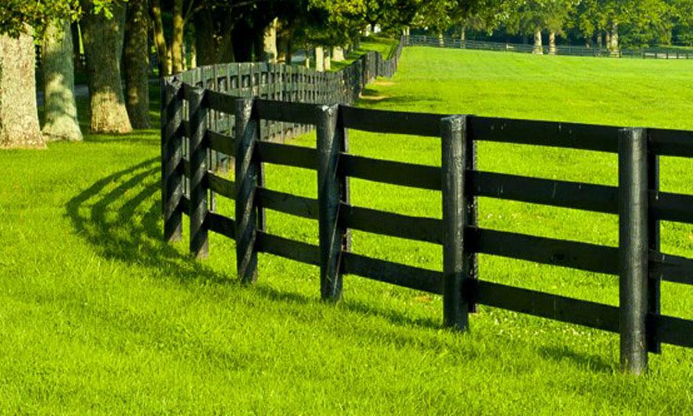 Rail Fencing 8