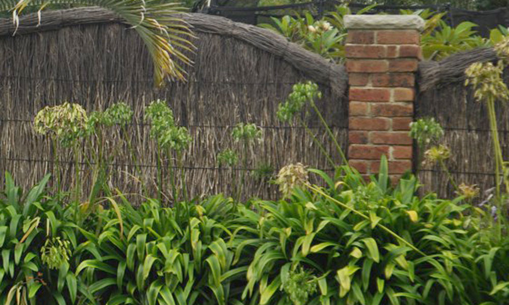 Thatched Fencing 5