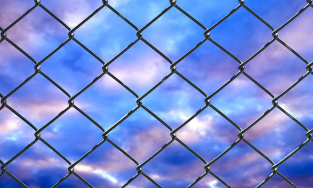 Wire Fencing 3
