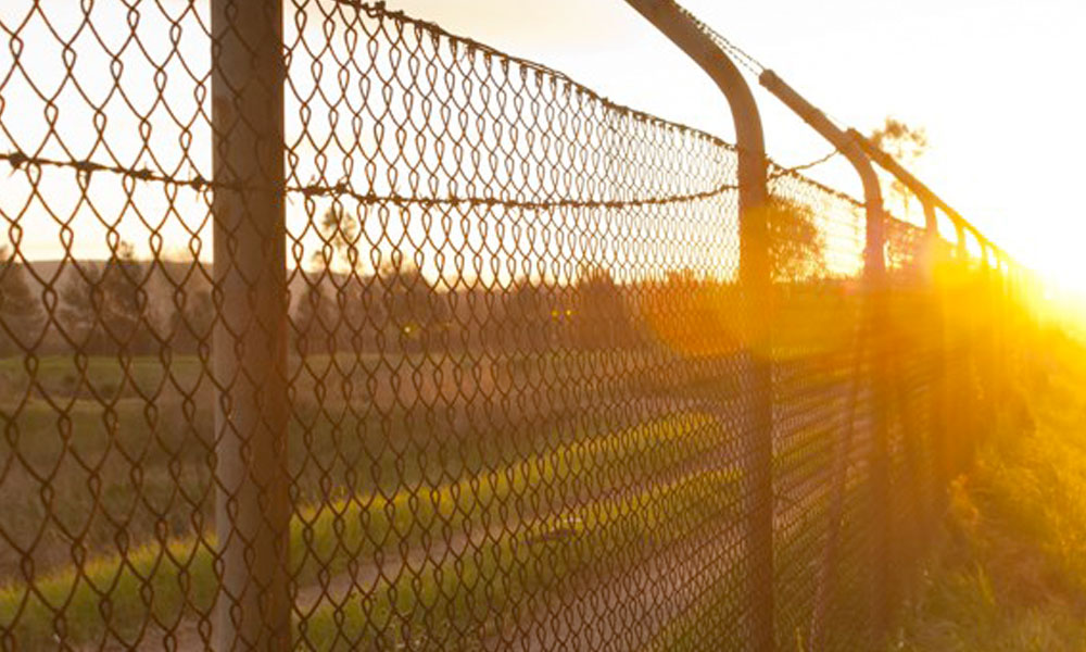 Wire Fencing 6