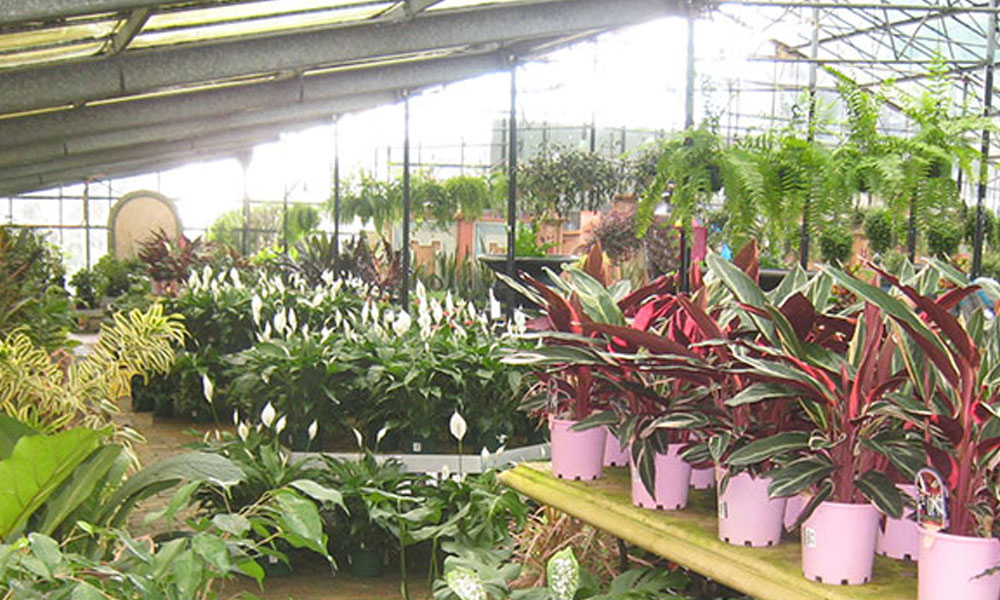 Garden Centres 4
