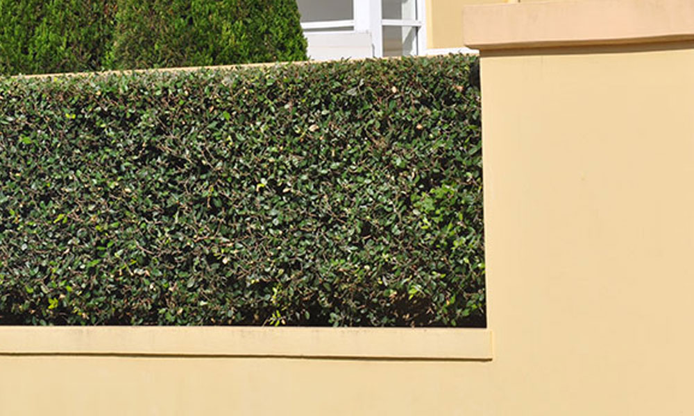 Hard Landscaping Surfaces 8