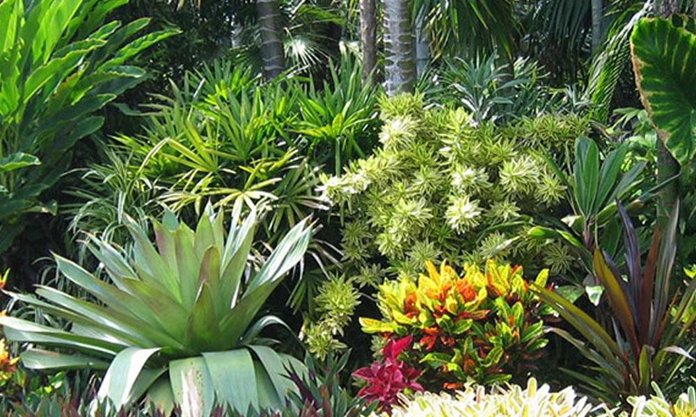 Horticulturists 5