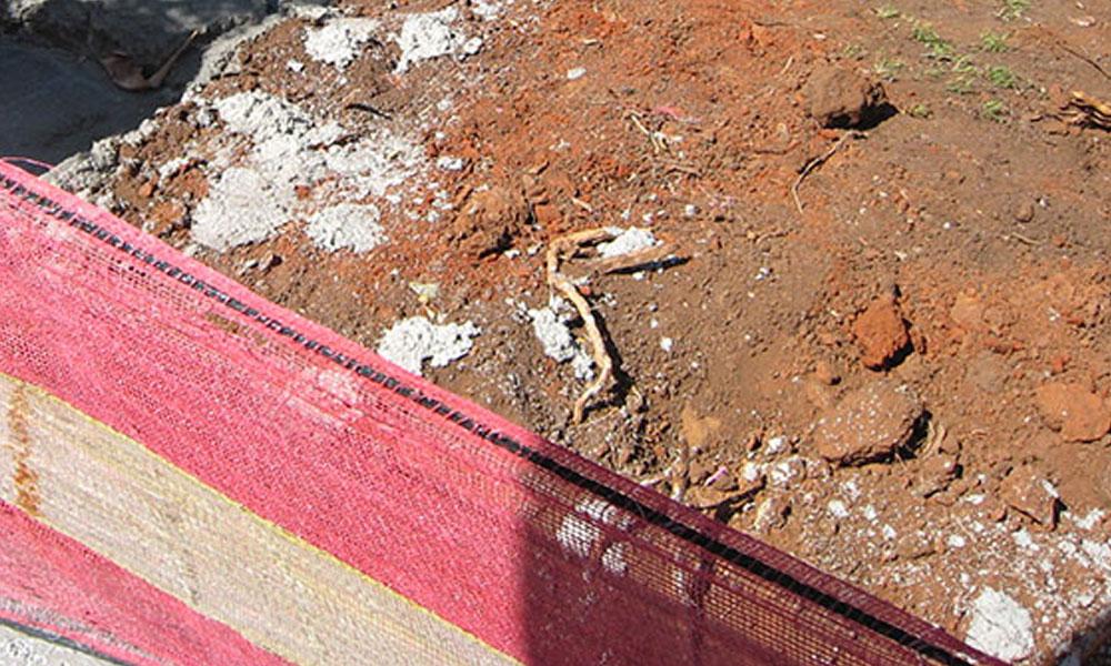 Landscape Demolition and Removals 3