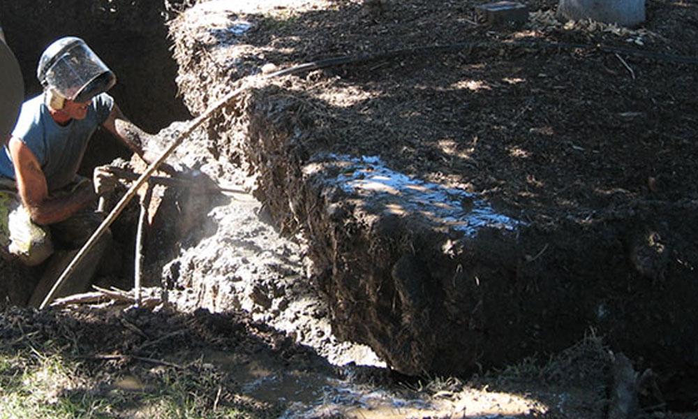 Landscape Demolition and Removals 6