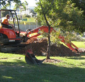 Landscape Demolition and Removals
