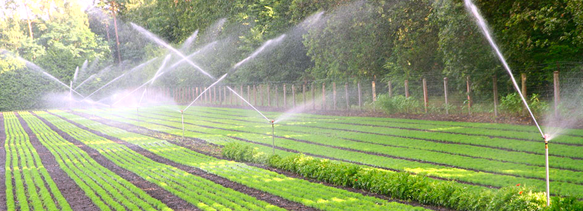 Landscaping Irrigations