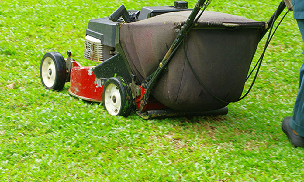 Lawn Mowing 8