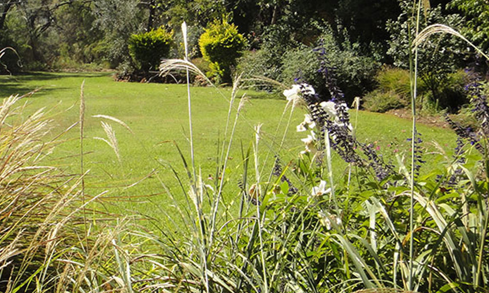 Native Gardens 1