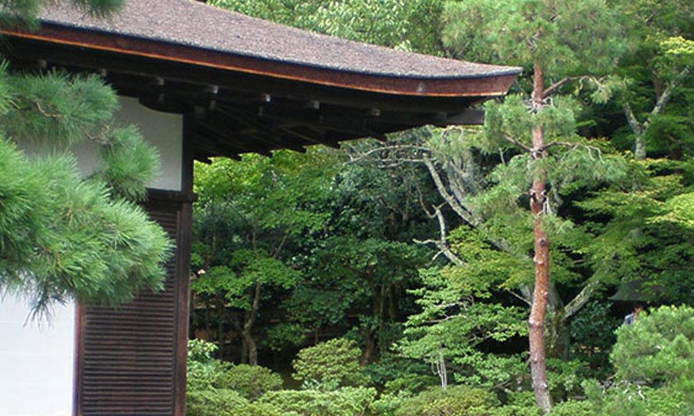 Oriental, Japanese and Zen Gardens 2