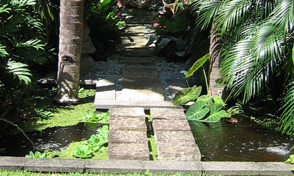 Planting, Garden and Landscape Designs 2