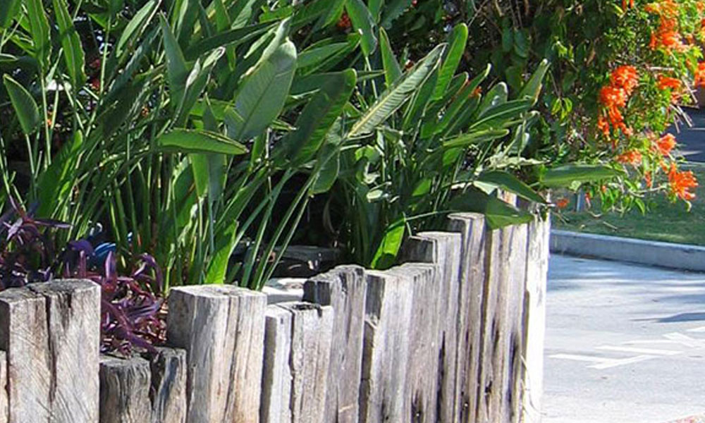Planting, Garden and Landscape Designs 3