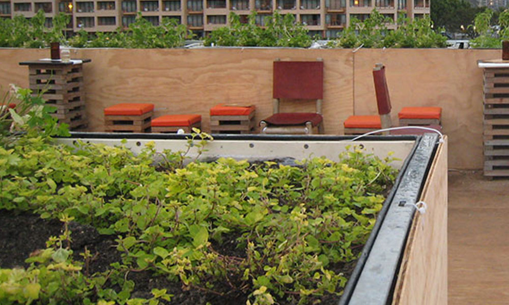 Rooftop and Balcony Gardens 2