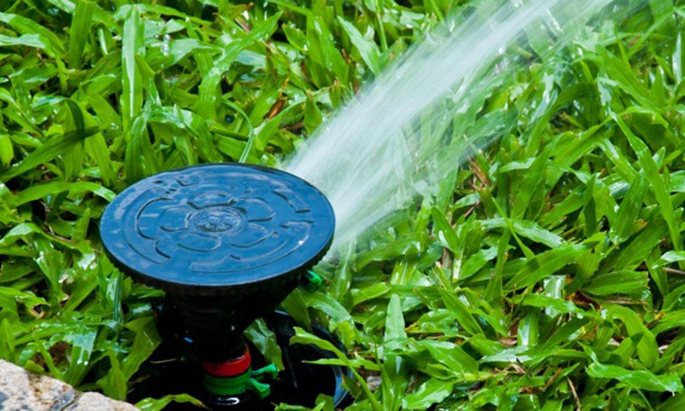 Irrigation 5