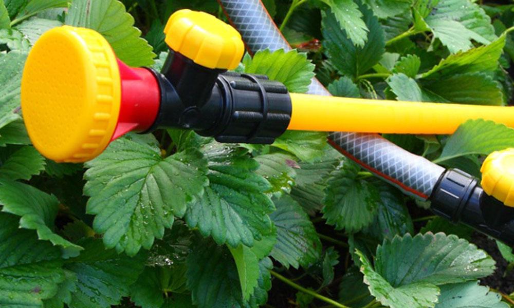 Irrigation 7