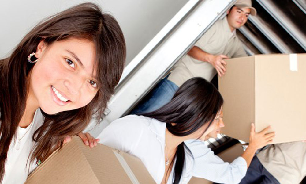 Business Removals 4